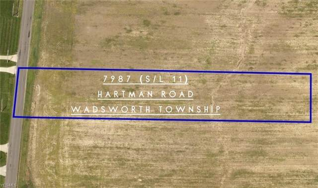 7987 Hartman Road, Wadsworth, OH 44281 (MLS #4220572) :: The Crockett Team, Howard Hanna