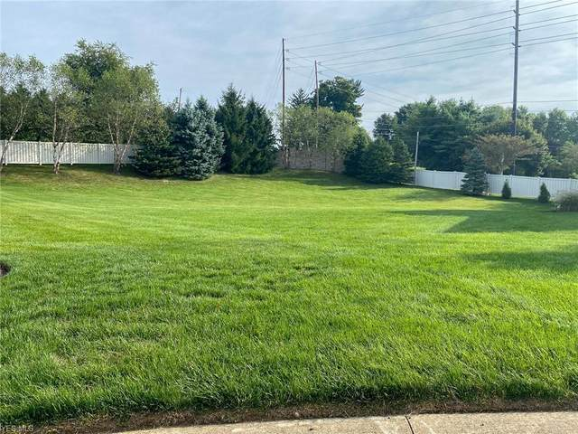 Serenity Drive NW, Massillon, OH 44646 (MLS #4221294) :: RE/MAX Trends Realty