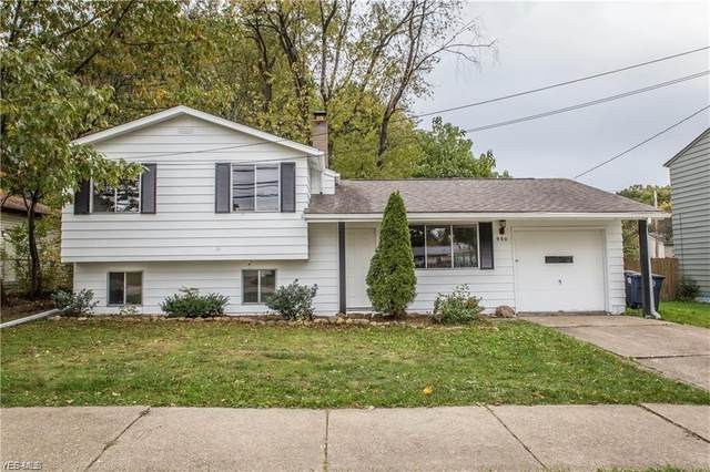 980 Independence Avenue, Akron, OH 44310 (MLS #4221461) :: The Jess Nader Team | RE/MAX Pathway