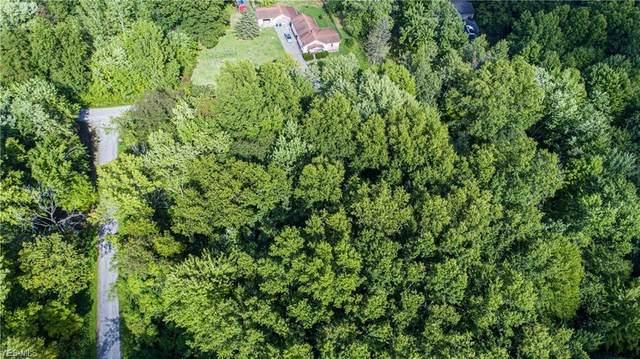 Grandview, Niles, OH 44446 (MLS #4221510) :: RE/MAX Valley Real Estate