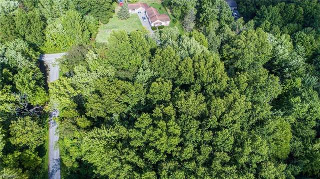 Grandview, Niles, OH 44446 (MLS #4221511) :: RE/MAX Valley Real Estate