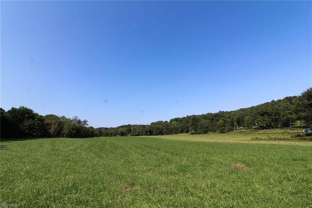 24549 Township Road 399, Coshocton, OH 43812 (MLS #4224034) :: Keller Williams Chervenic Realty
