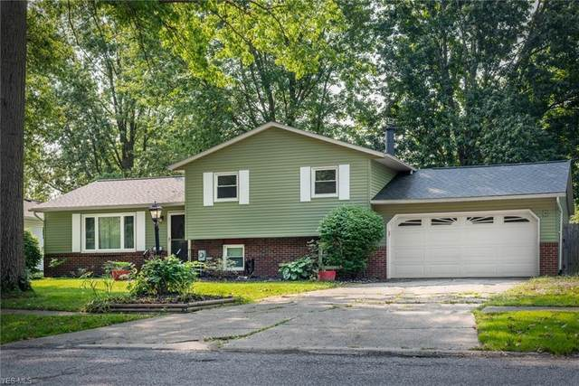 8732 Harris Drive, North Ridgeville, OH 44039 (MLS #4224056) :: The Art of Real Estate