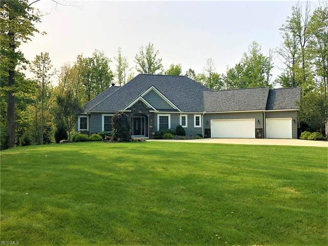 4580 Sunset Cove Drive, Medina, OH 44256 (MLS #4224102) :: The Art of Real Estate