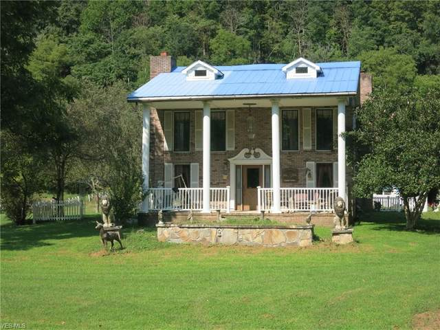 369 Little Lynn Camp Road, Palestine, WV 26160 (MLS #4224328) :: The Art of Real Estate