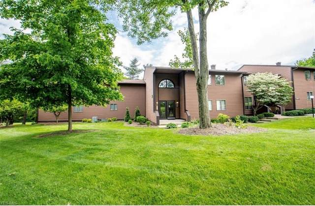 1175 E Calla Road A225, Poland, OH 44514 (MLS #4224420) :: The Jess Nader Team | RE/MAX Pathway