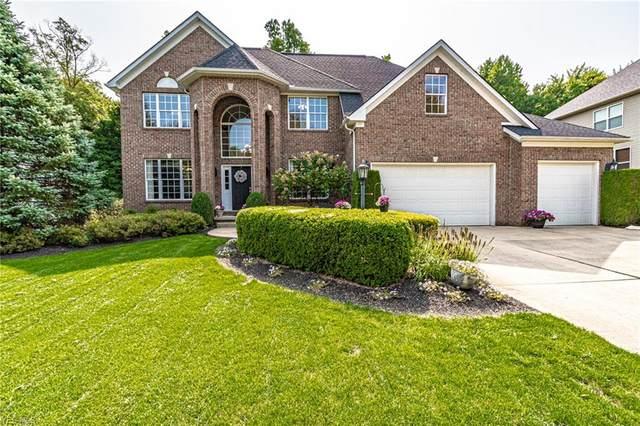 1204 Alexandria Lane, Medina, OH 44256 (MLS #4224549) :: The Art of Real Estate