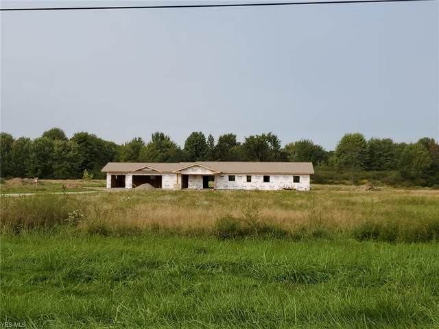 3159 Winchell Road, Mantua, OH 44255 (MLS #4224612) :: Tammy Grogan and Associates at Cutler Real Estate