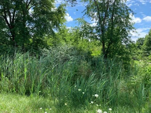 Webb Road, Ravenna, OH 44266 (MLS #4224675) :: The Art of Real Estate