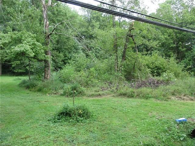 118 Dana's Run Road, Newport, OH 45768 (MLS #4224722) :: Tammy Grogan and Associates at Cutler Real Estate