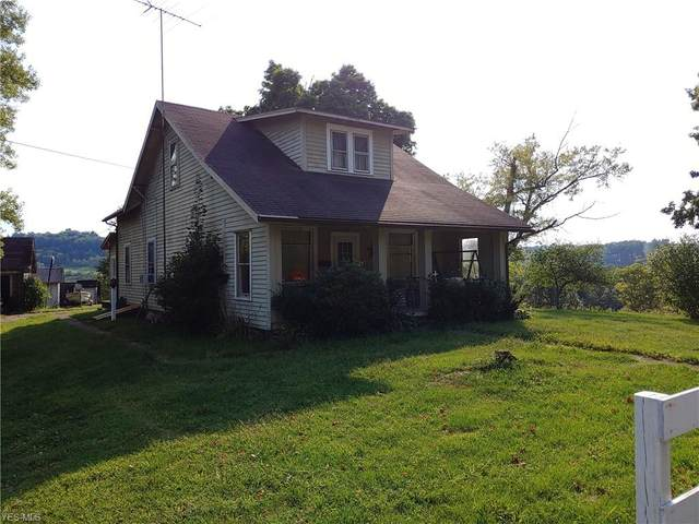 38699 State Rd 151, Scio, OH 43988 (MLS #4224835) :: RE/MAX Valley Real Estate