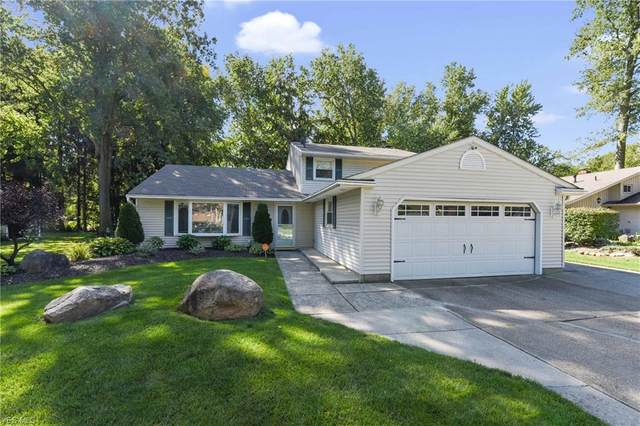 34187 Gail Drive, North Ridgeville, OH 44039 (MLS #4225013) :: The Jess Nader Team | RE/MAX Pathway