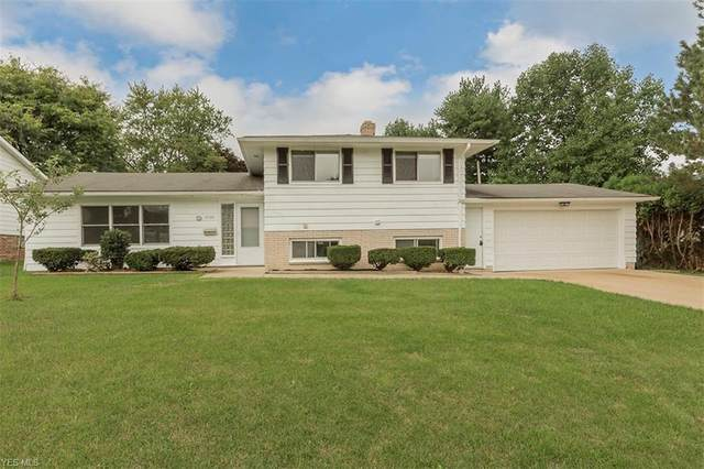 2038 Hansford Road, Mayfield Heights, OH 44124 (MLS #4225126) :: The Crockett Team, Howard Hanna