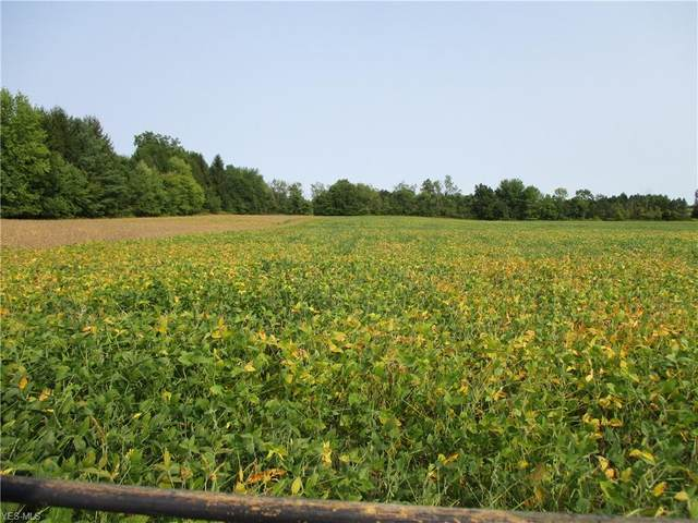 Lot #4 Stateline Road, New Middletown, OH 44442 (MLS #4225161) :: Tammy Grogan and Associates at Cutler Real Estate