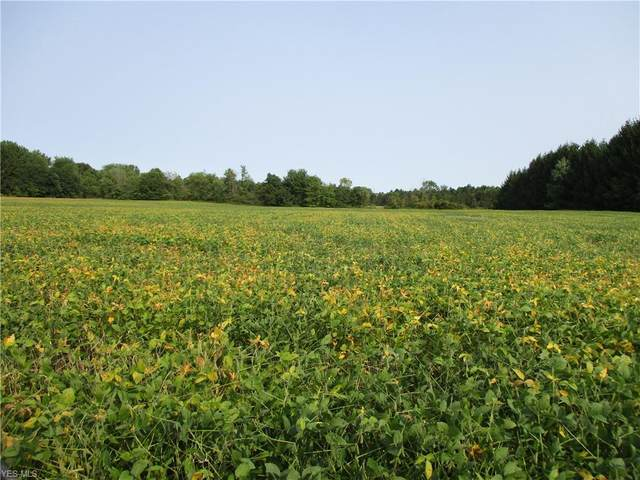 Lot #5 Stateline Road, New Middletown, OH 44442 (MLS #4225164) :: Tammy Grogan and Associates at Cutler Real Estate