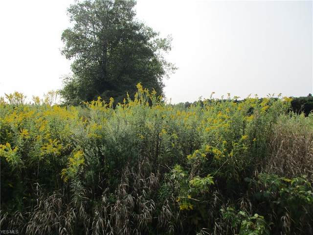 Lot #8 Stateline Road, New Middletown, OH 44442 (MLS #4225167) :: Tammy Grogan and Associates at Cutler Real Estate