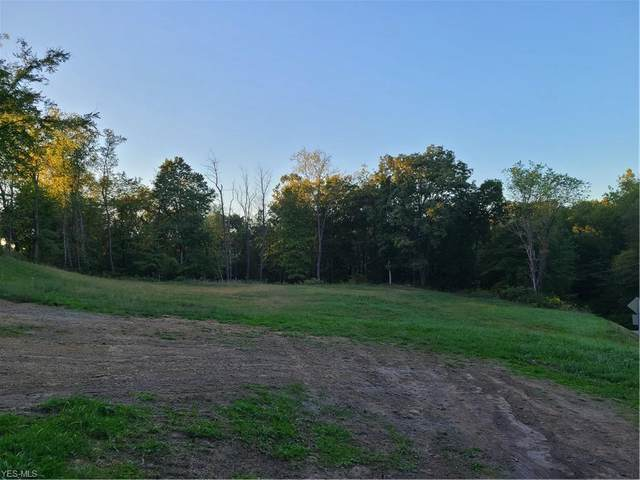 TBD Johnsonville And Aiken Acres Road, Chester, WV 26034 (MLS #4225305) :: The Jess Nader Team | RE/MAX Pathway