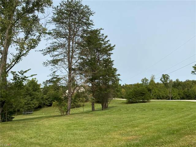 Nelson Hill Drive, Williamstown, WV 26187 (MLS #4225315) :: RE/MAX Valley Real Estate