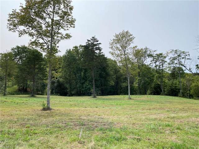Nelson Hill Drive, Williamstown, WV 26187 (MLS #4225333) :: The Jess Nader Team | RE/MAX Pathway