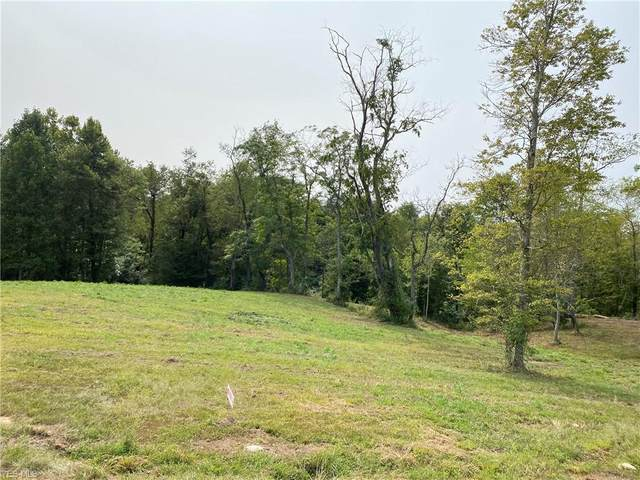 Nelson Hill Drive, Williamstown, WV 26187 (MLS #4225341) :: The Jess Nader Team | RE/MAX Pathway
