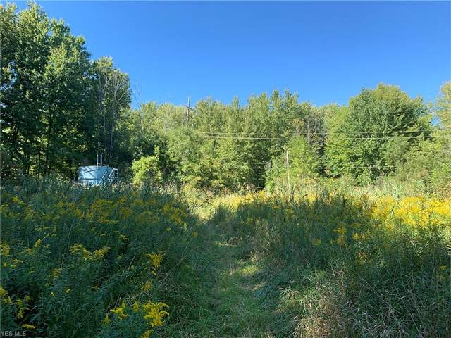 Gageville Monroe Road, Kingsville, OH 44048 (MLS #4225422) :: Select Properties Realty