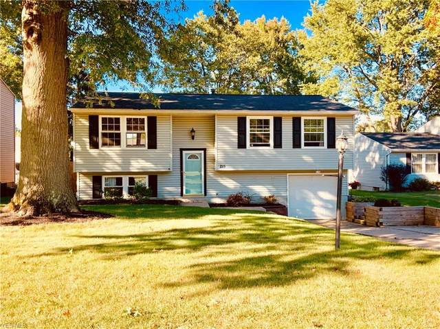 215 Overlook Drive, Medina, OH 44256 (MLS #4225439) :: The Crockett Team, Howard Hanna