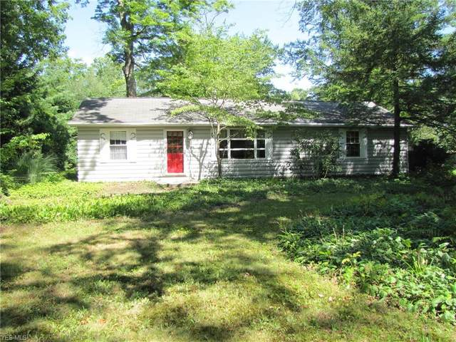 7991 Lake Road, Chippewa Lake, OH 44273 (MLS #4225811) :: RE/MAX Valley Real Estate