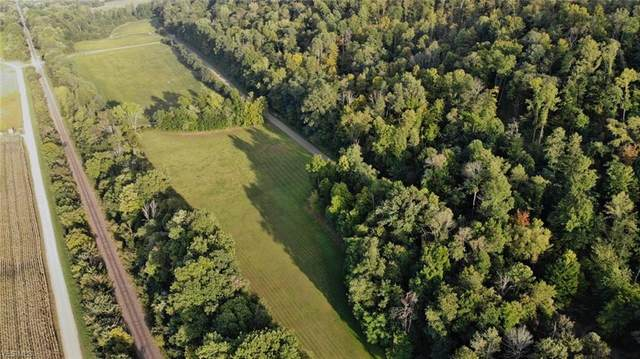 Narrows Road, Dresden, OH 43821 (MLS #4226177) :: The Art of Real Estate