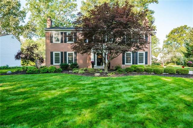 230 Parkview Drive, Avon Lake, OH 44012 (MLS #4226580) :: Keller Williams Chervenic Realty