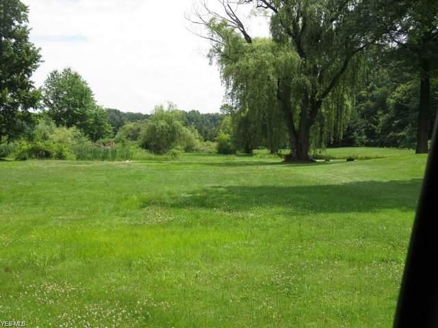 Dayton Road, Madison, OH 44057 (MLS #4226606) :: Keller Williams Chervenic Realty