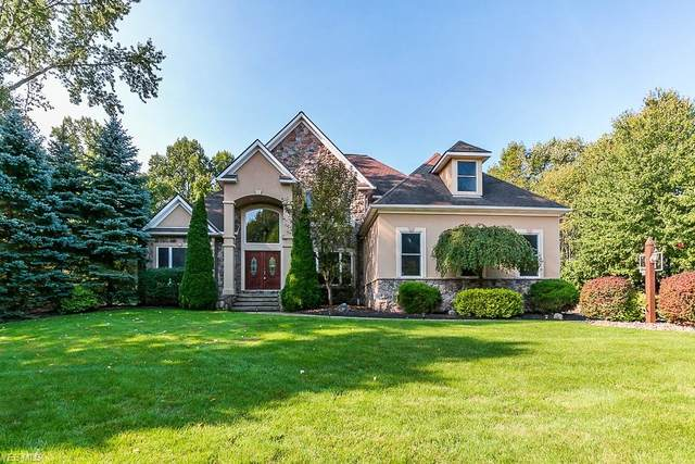 5672 Canyon Ridge Drive, Perry, OH 44077 (MLS #4226688) :: The Art of Real Estate