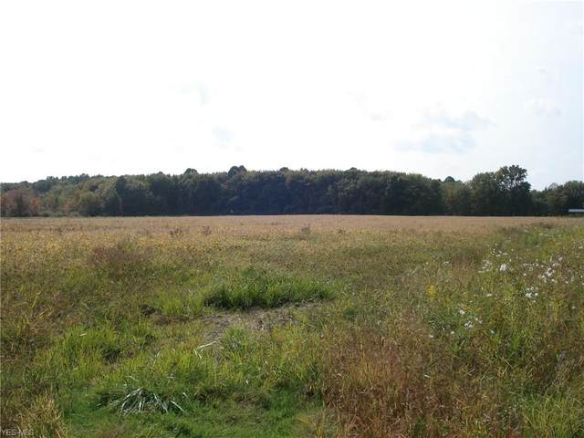 0 State Route 534, Geneva, OH 44041 (MLS #4226764) :: Tammy Grogan and Associates at Cutler Real Estate