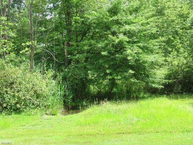 Dayton Road, Madison, OH 44057 (MLS #4226842) :: Keller Williams Chervenic Realty