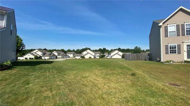 Cambridge Court, Kent, OH 44240 (MLS #4227182) :: The Holden Agency