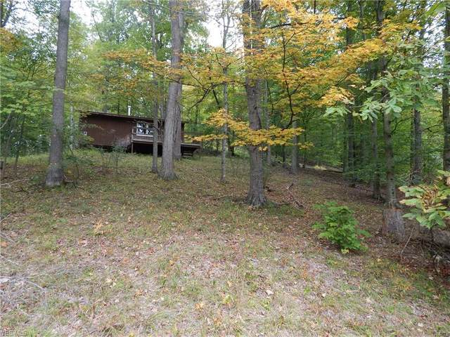 Sand Fork, New Milton, WV 26411 (MLS #4227747) :: The Art of Real Estate