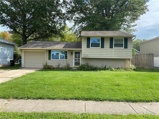 1133 Sweetbriar Drive, Vermilion, OH 44089 (MLS #4228401) :: Keller Williams Chervenic Realty