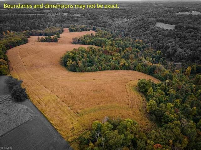 V/L Pronto Road, Carrollton, OH 44615 (MLS #4228411) :: The Art of Real Estate