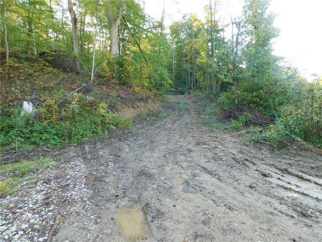 State Route 691, Nelsonville, OH 45764 (MLS #4228952) :: Tammy Grogan and Associates at Cutler Real Estate