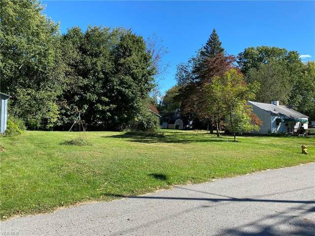 Pickford Avenue, Akron, OH 44320 (MLS #4228984) :: Select Properties Realty