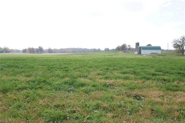 lot 8 Lake Center Street NW, Uniontown, OH 44685 (MLS #4229204) :: Tammy Grogan and Associates at Cutler Real Estate