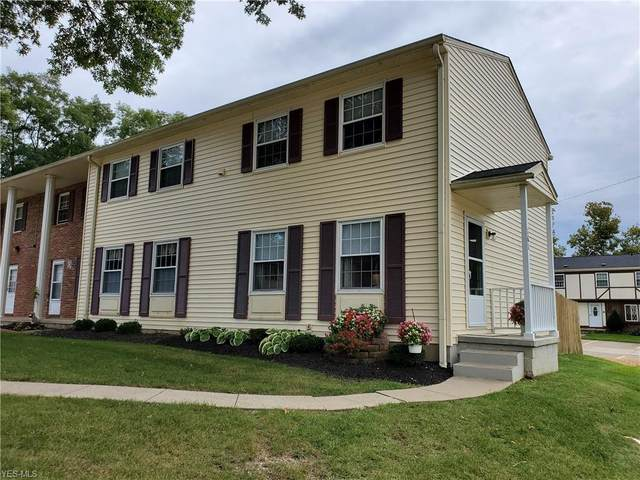 161 Ault Street, Wadsworth, OH 44281 (MLS #4229351) :: Keller Williams Legacy Group Realty