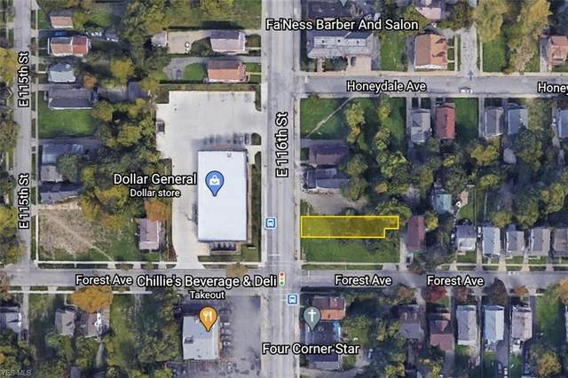 2961 E 116th Street, Cleveland, OH 44120 (MLS #4229653) :: Tammy Grogan and Associates at Cutler Real Estate