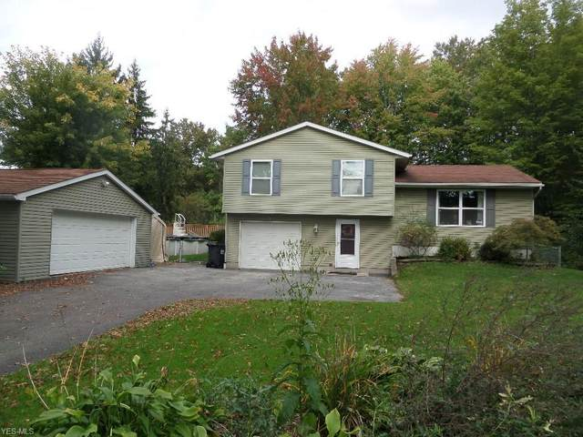4702 New Road, Austintown, OH 44515 (MLS #4229681) :: RE/MAX Valley Real Estate
