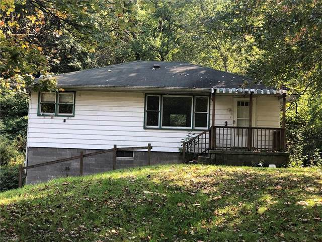 1295 Park Boulevard E, East Liverpool, OH 43920 (MLS #4230060) :: Tammy Grogan and Associates at Cutler Real Estate