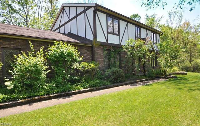 4134 Hamilton Road, Medina, OH 44256 (MLS #4230111) :: Tammy Grogan and Associates at Cutler Real Estate
