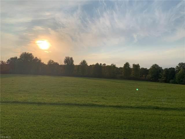 Nicholson Road, Garrettsville, OH 44231 (MLS #4230234) :: Select Properties Realty