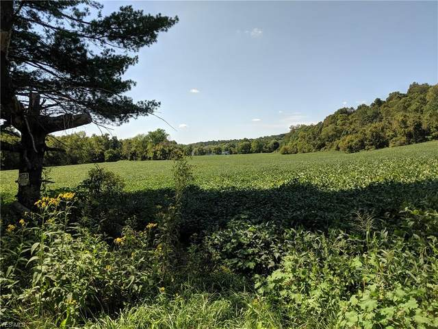 Tract 5 Eyermann Road, Belpre, OH 45714 (MLS #4230338) :: Select Properties Realty