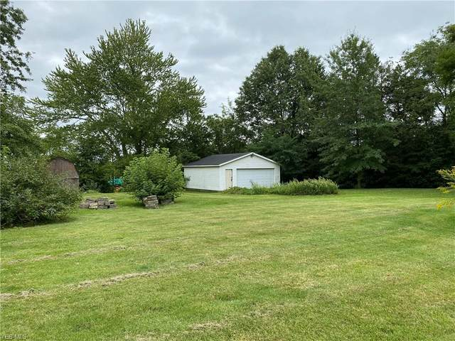 1433 Bernice Street, Akron, OH 44307 (MLS #4230342) :: Tammy Grogan and Associates at Cutler Real Estate