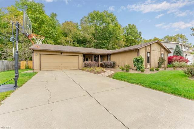 630 Angiline Drive, Boardman, OH 44512 (MLS #4230679) :: The Holden Agency