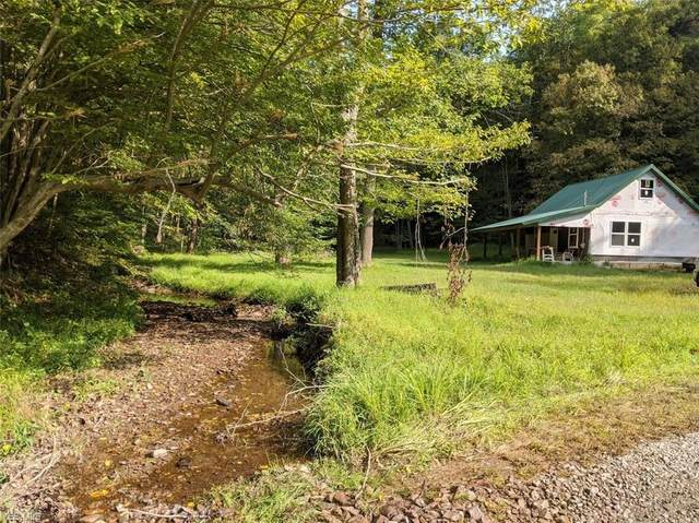 Johnson Fork Road, Salem, WV 26426 (MLS #4230785) :: The Art of Real Estate